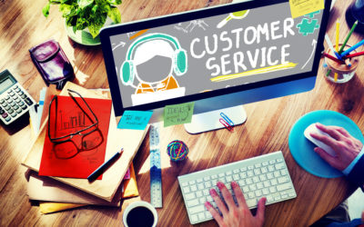 Excellent Customer Service: The Role of Delivery Agencies.